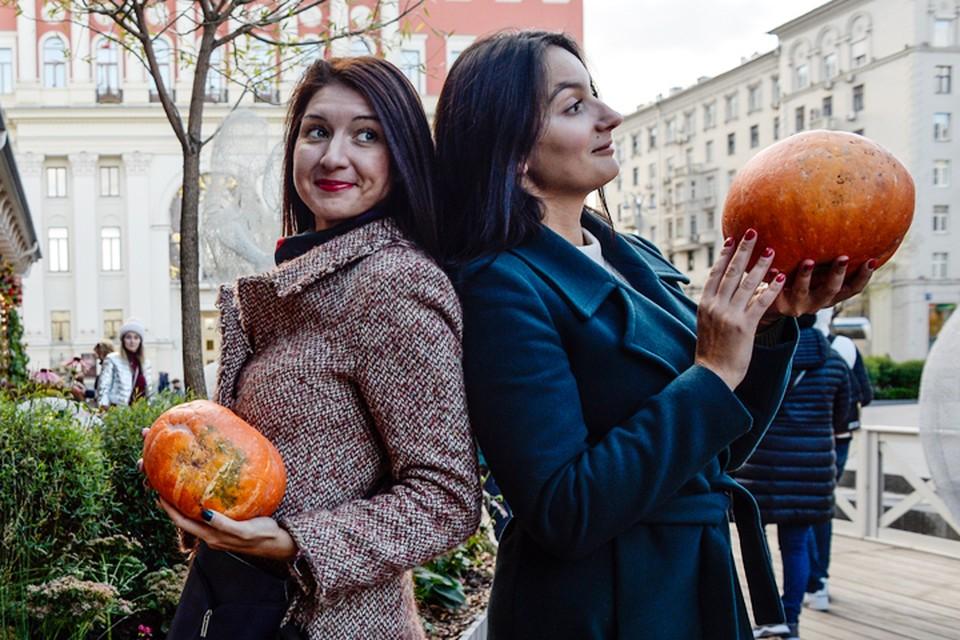 Неожиданно приятную для середины ноября погоду в Москву несет огромный антициклон