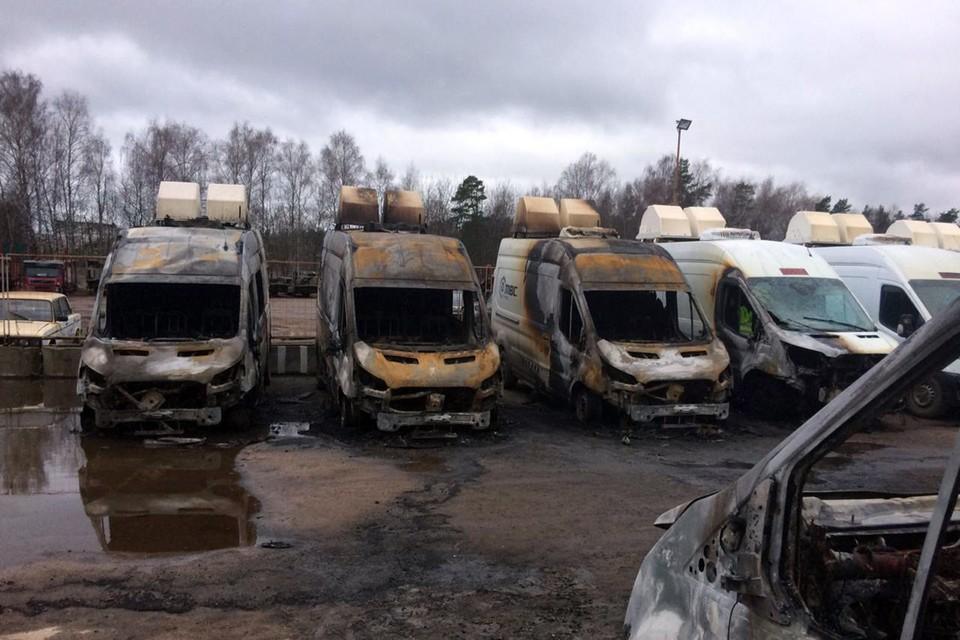 В полиции Московской области выясняют обстоятельства произошедшего