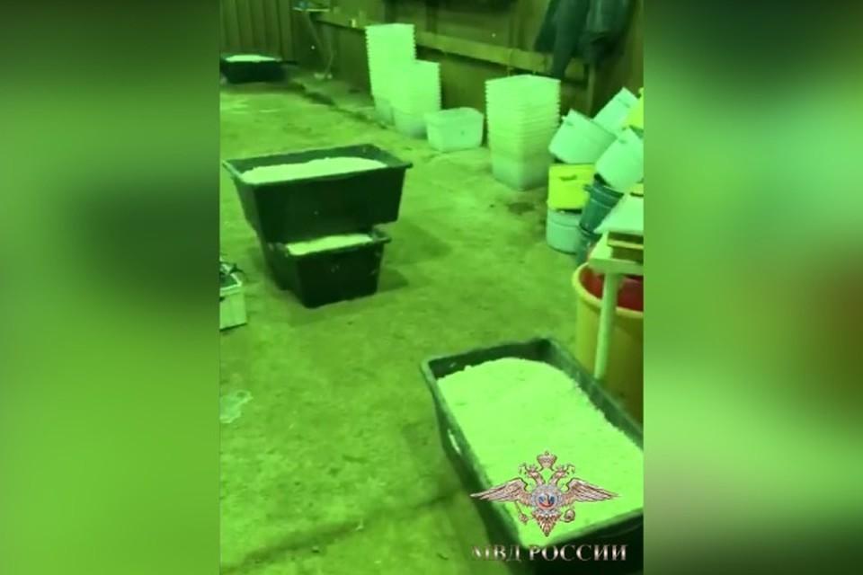 Главный химик: кузбассовца задержали в нарколаборатории с 90 тоннами наркотиков. ФОТО: кадр видео ГУ МВД России по Ленинградской области.