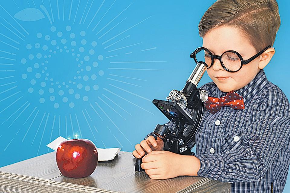 - Гляжу я в микроскоп на срез: плод с ГМО, а может, без? Фото: cosmiccrisp.com