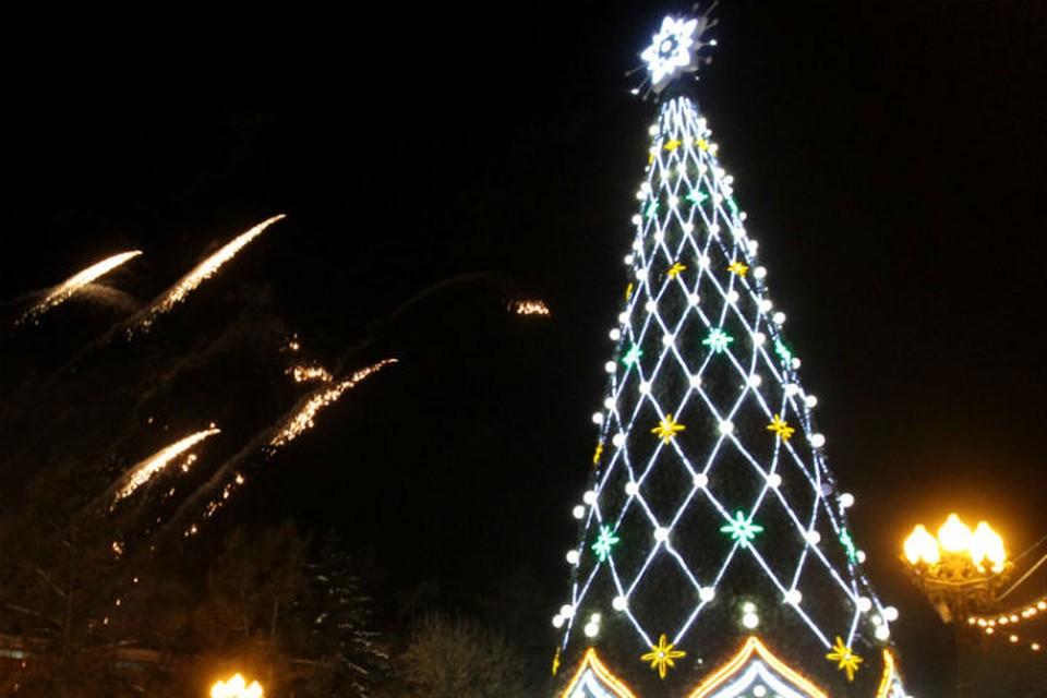 Главную елку Иркутска откроют 21 декабря