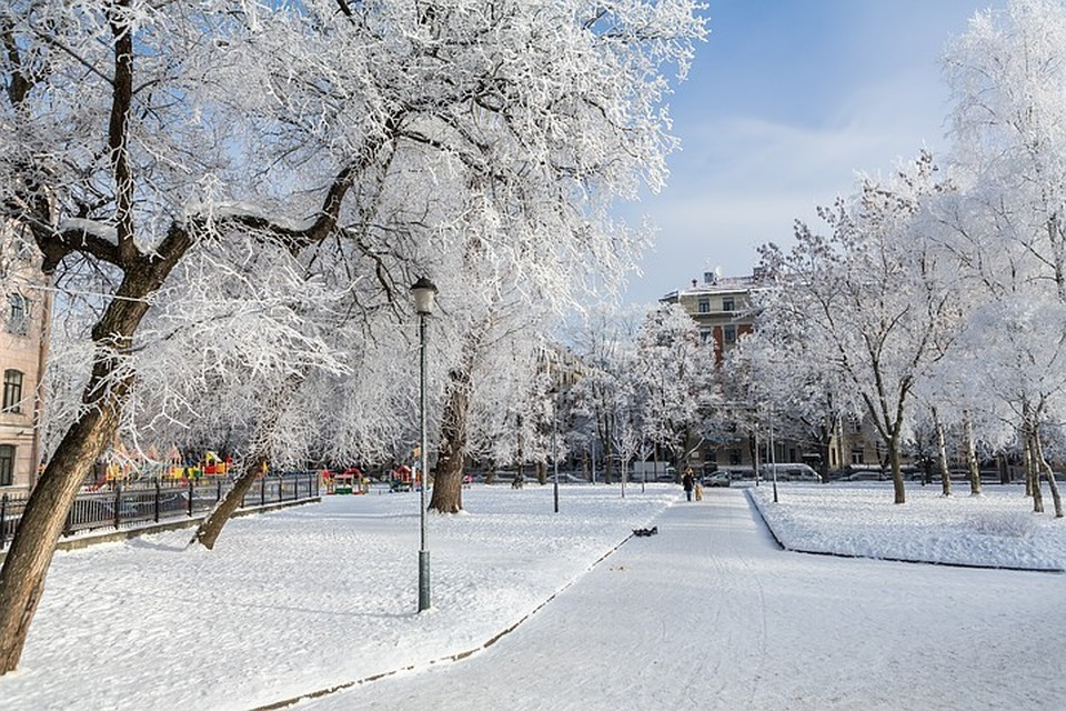 В ночь на четверг в Ленинградской области немного подморозит.