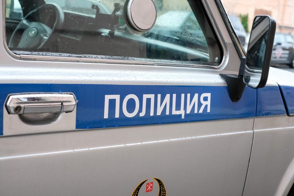 В Петербурге ограбили приезжего на 14 тысяч долларов, который планировал купить автомобиль