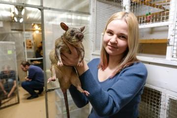 Метровых крыс-гигантов завел у себя дома зоолог из Ленобласти
