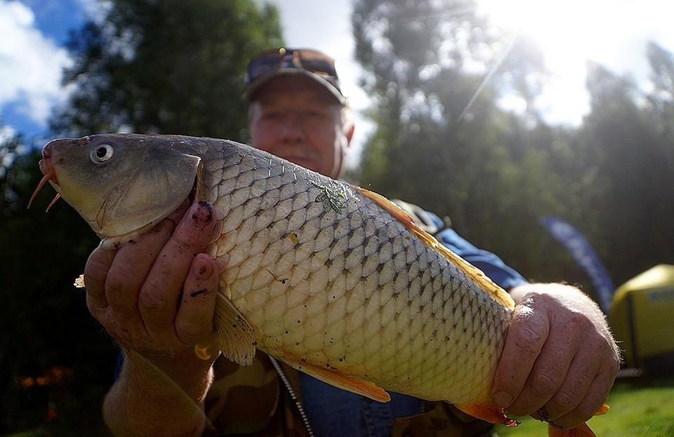Рыбалка станет бесплатной, но есть много ограничений