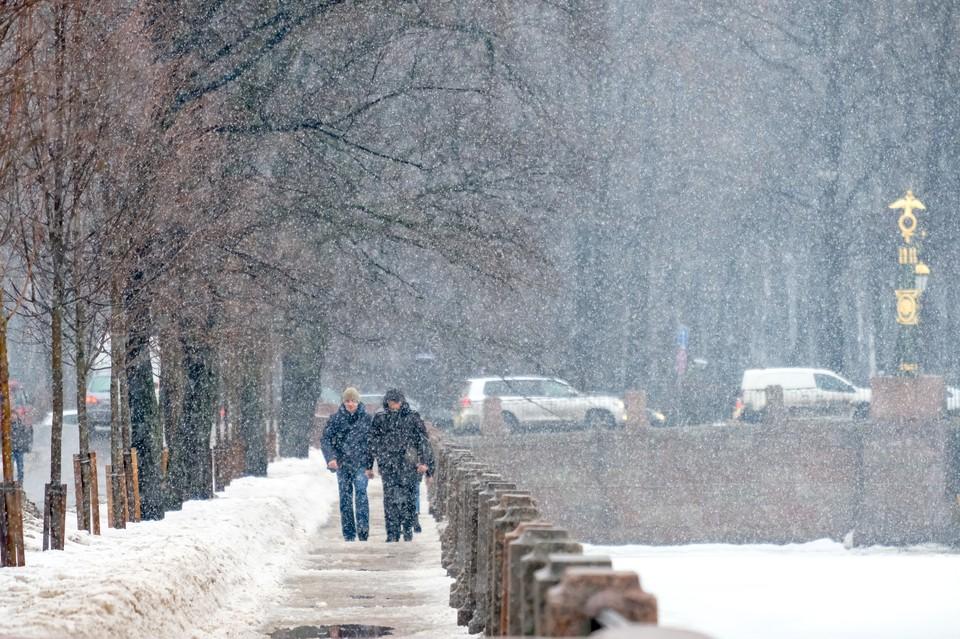 Спасатели предупредили об ухудшении погоды в Петербурге.