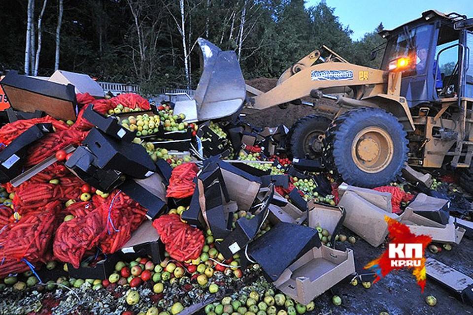 Один из самых ярких образов контрсанкций - уничтожение продуктов бульдозерами.