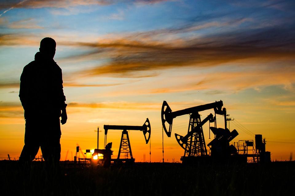 Вывозу капитала способствует сам характер российских доходов: из всех секторов мировой экономики нефтяной - самый непрозрачный