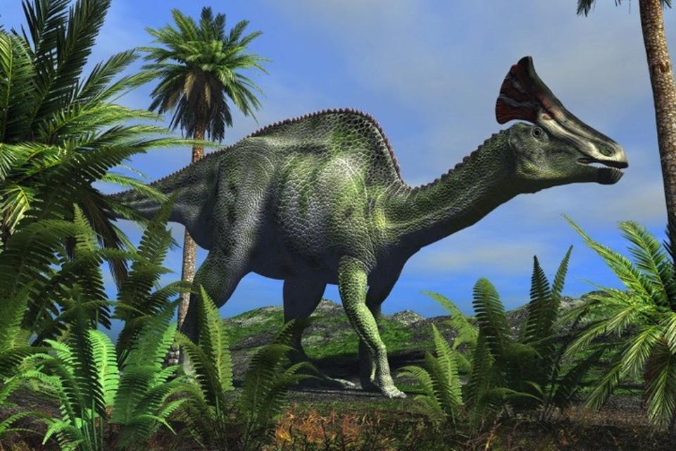 Гадрозавр, который болел человеческой болезнью.