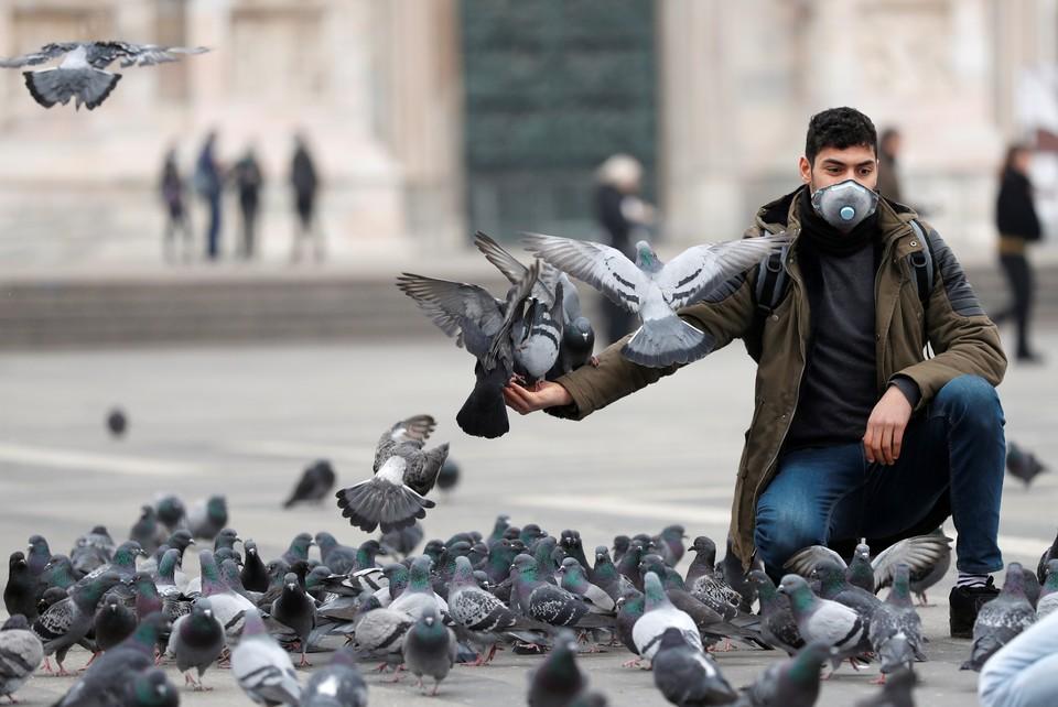 Мужчина кормит голубей на площади Миланa.
