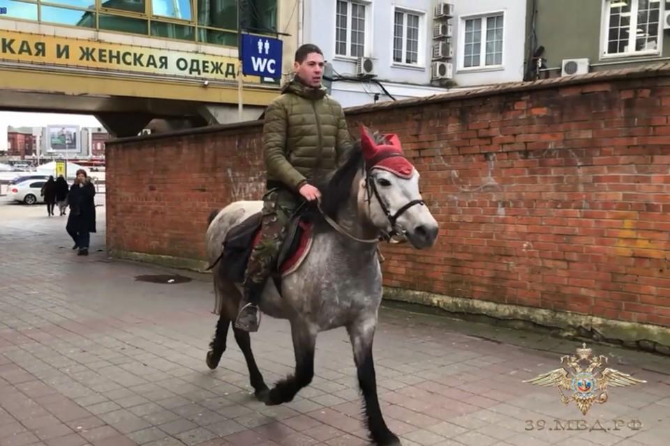 Денис Шипилов бросился за грабителем верхом на полупони.