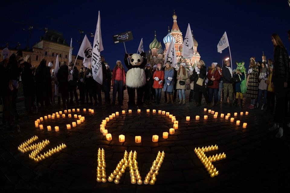 В Москве «Час Земли-2020» начнется 28 марта в 20:30
