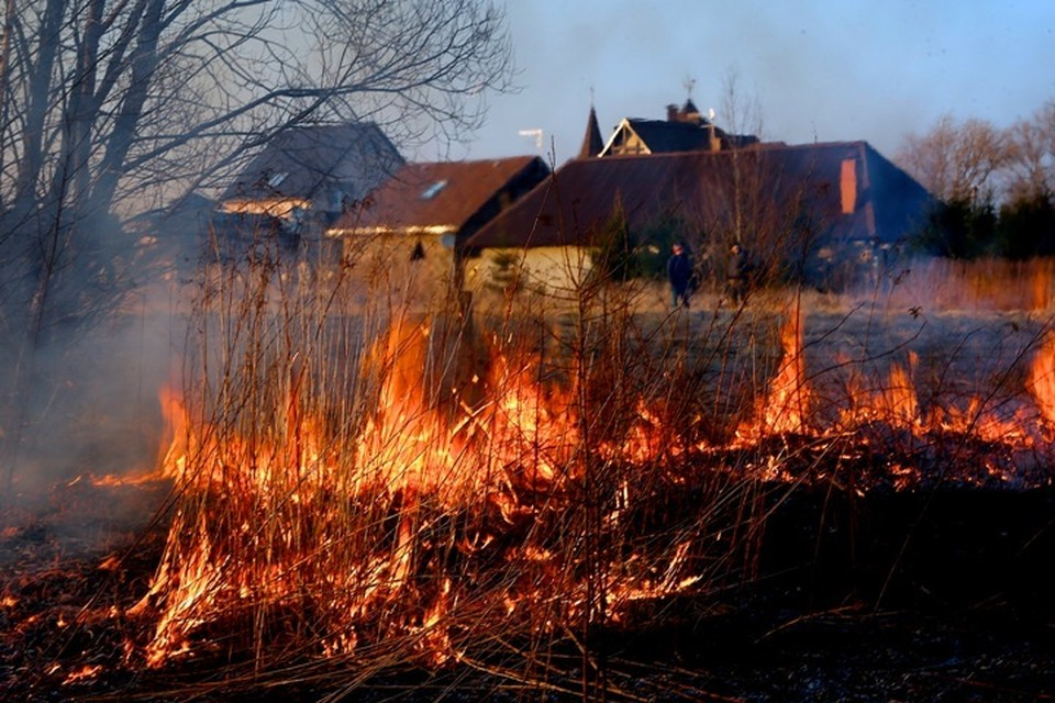 С 15 апреля в Кузбассе начнет действовать особый противопожарный режим