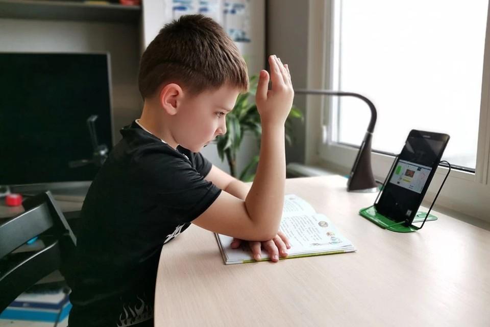 Дистанционное обучение школьников в Краснодаре: когда начнется и как будет проходить