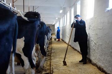 О чем говорят фермеры: «Агрохолдингам государство поможет, а про нас забыли?»