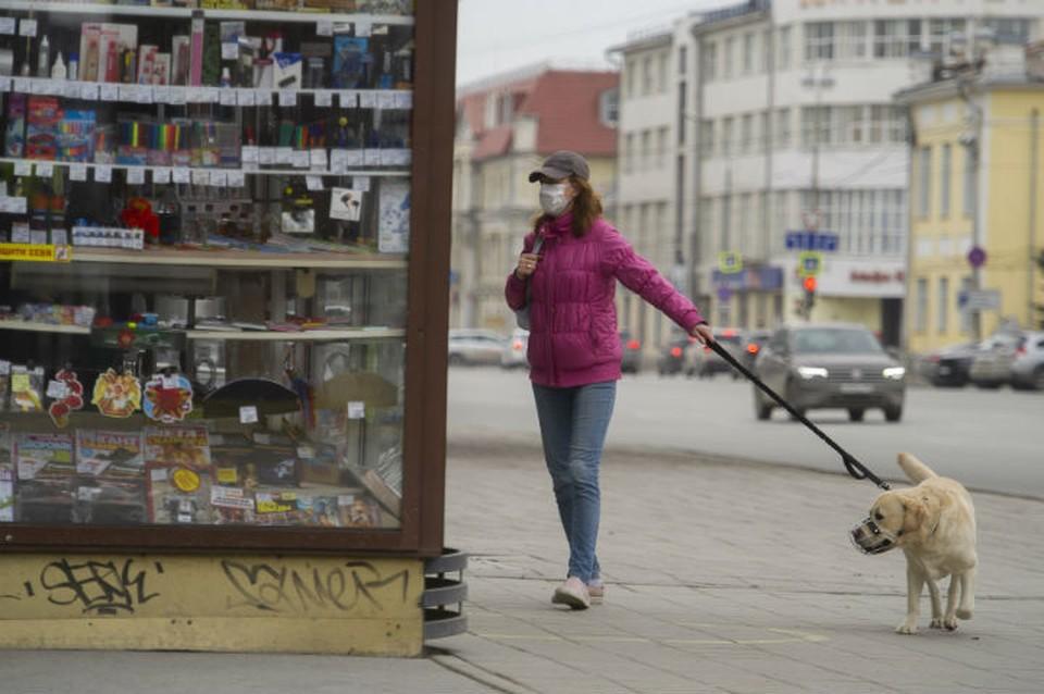 Маски продаются в большинстве магазинов тканей, супермаркетах и киосках Роспечати
