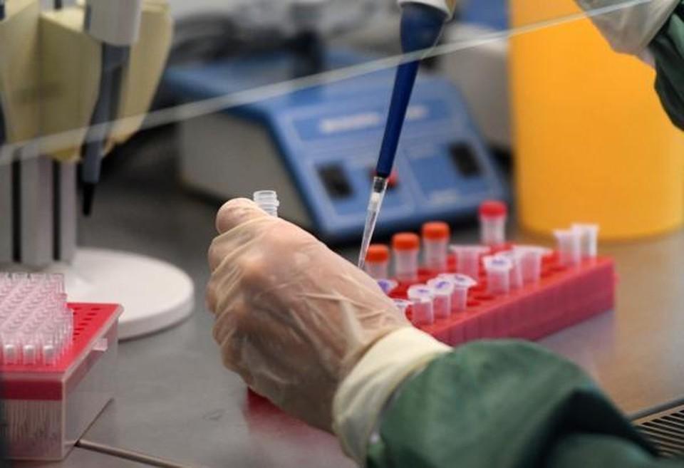 Тесты на иммунитет в Волгограде пока не делают. Фото: Роспотребнадзор
