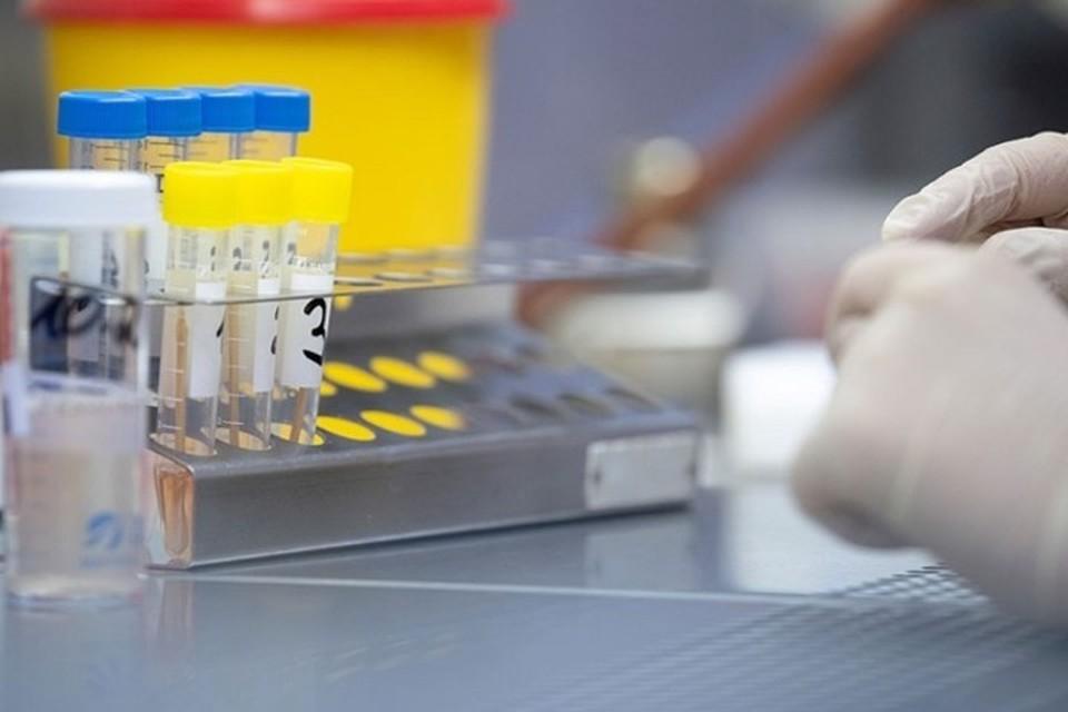В ДНР выявлено 8 новых случаев коронавирусной инфекции COVID-19. Фото: МЗ ДНР
