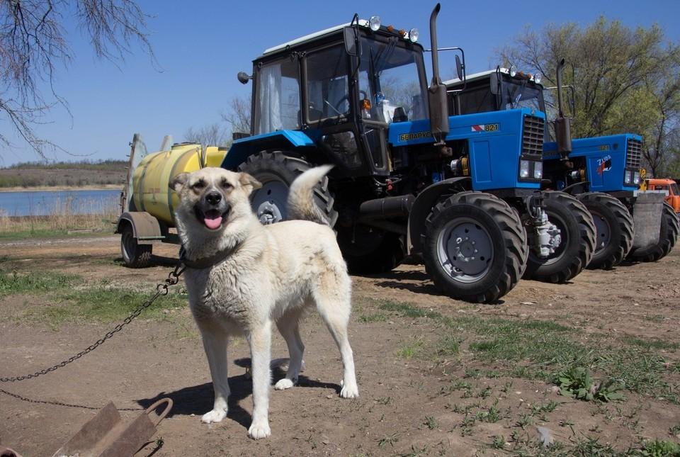 На полях сейчас проводятся сельскохозяйственные работы