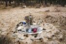 В Индии заживо похороненный смог выбраться из могилы