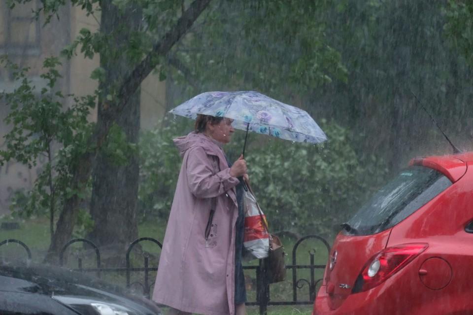 Мощный ливень со штормом повалил деревья и затопил Санкт-Петербург