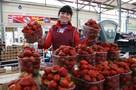 Калининградские фермеры: Клубника будет еще две недели, но цена уже не опустится