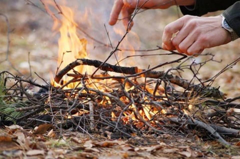 На Кубани запрещен доступ в леса из-за жары. Фото ГУ МЧС по краю