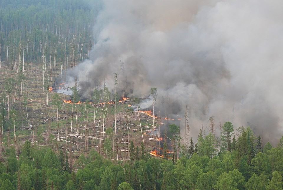 В Красноярском крае лесной пожар вплотную подступает к таежной деревне. Фото: Виктор Чавайн