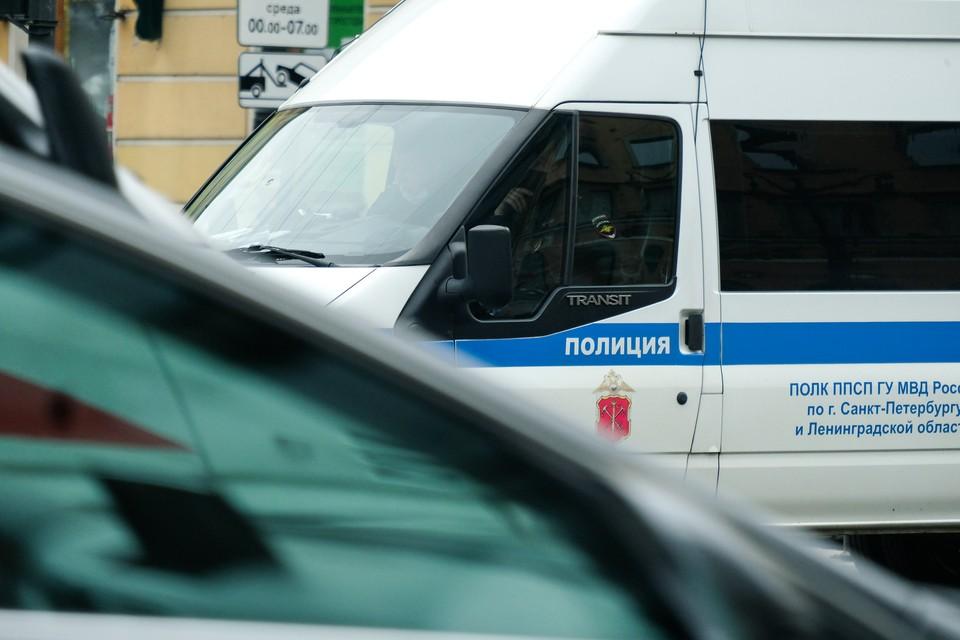Полиция ищет насильника, избившего девушку на Васильевском острове.