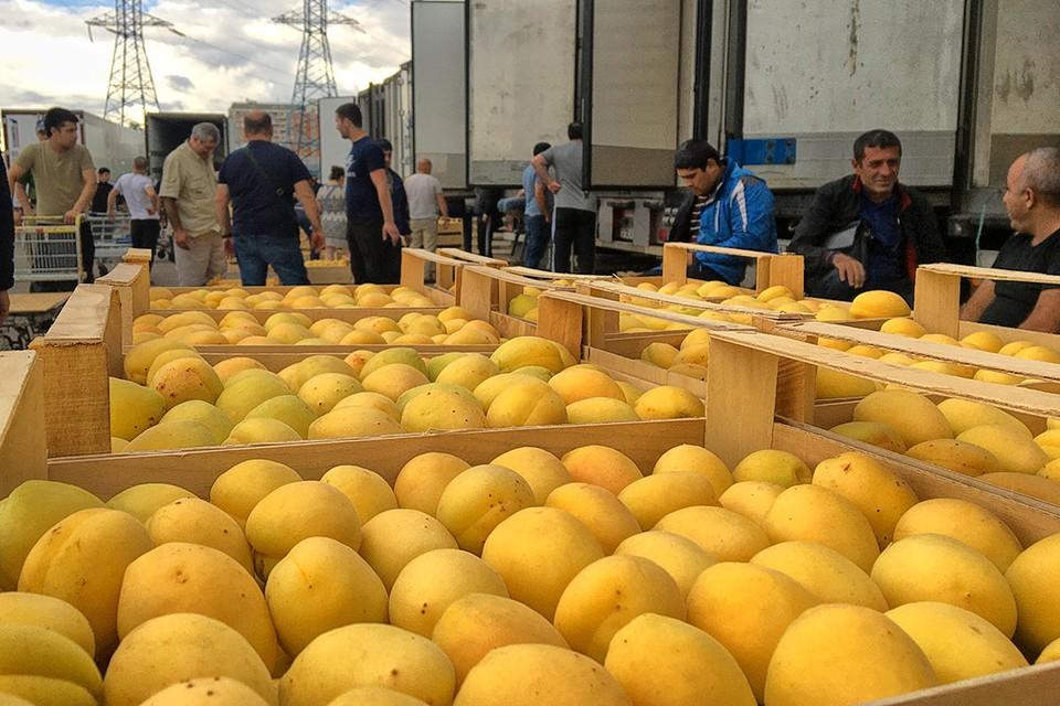"""Торговля армянскими абрикосами, которым не нашлось места в """"Фуд Сити"""". Они действительно очень сладкие и вкусные. Фото: Семен ЕЛЕНИН"""