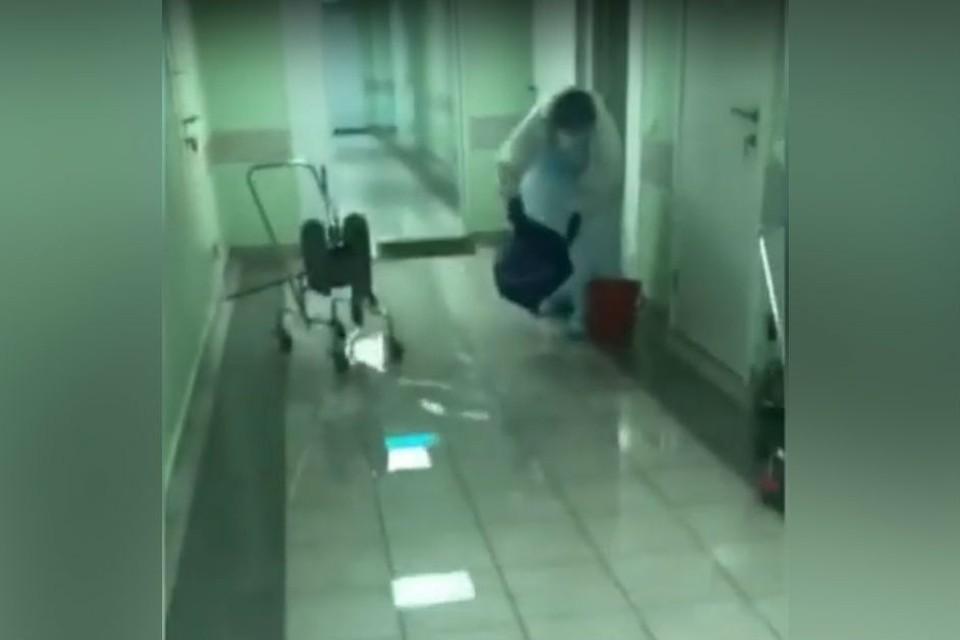 Фото: кадр с видео naurfo/youtube.com