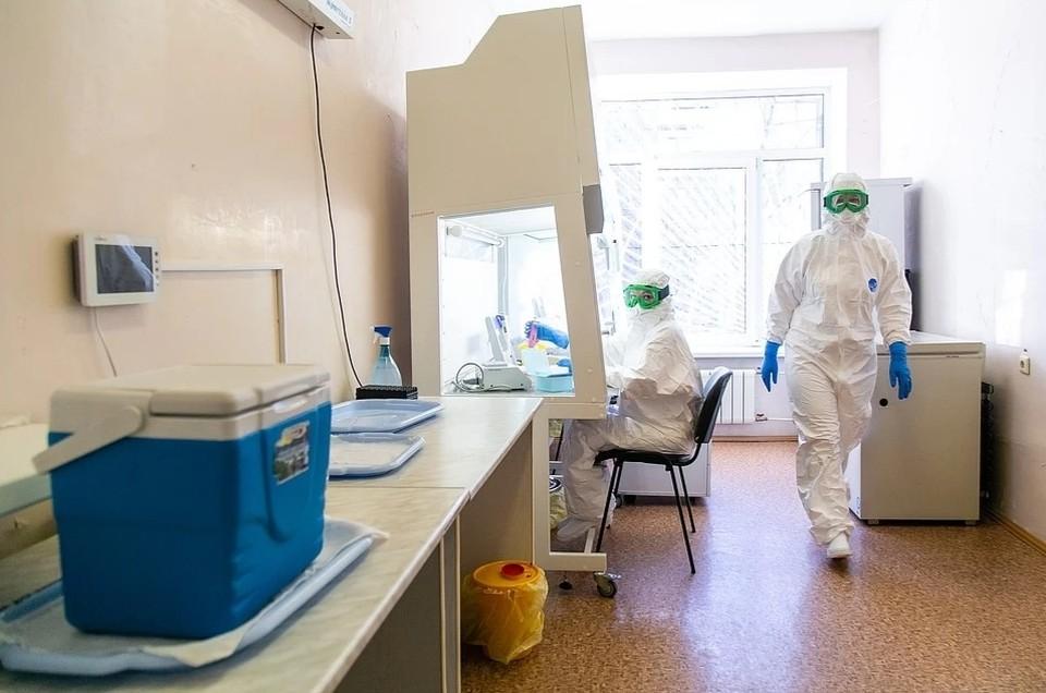 За все время коронавирус в ДНР выявлен у 1611 жителей