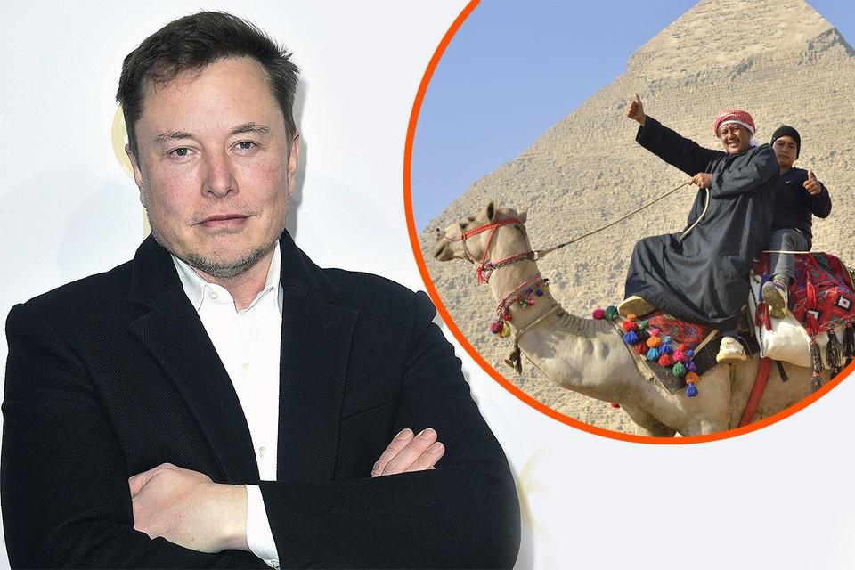 Илона Маска приглашают на экскурсию к пирамидам Египта.