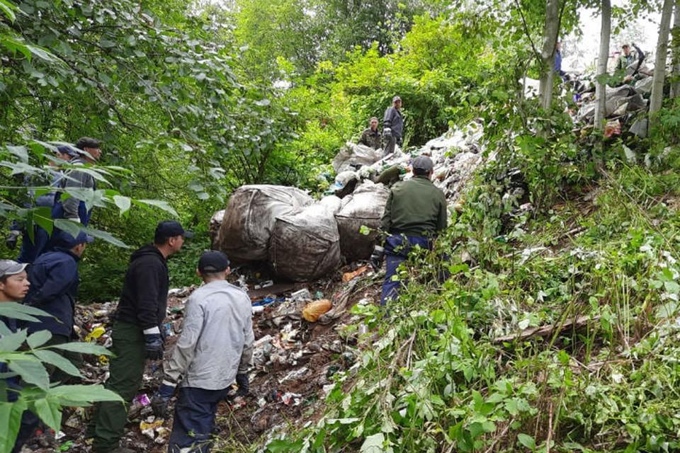 В Ярославле от мусора очистили Скобыкинский парк