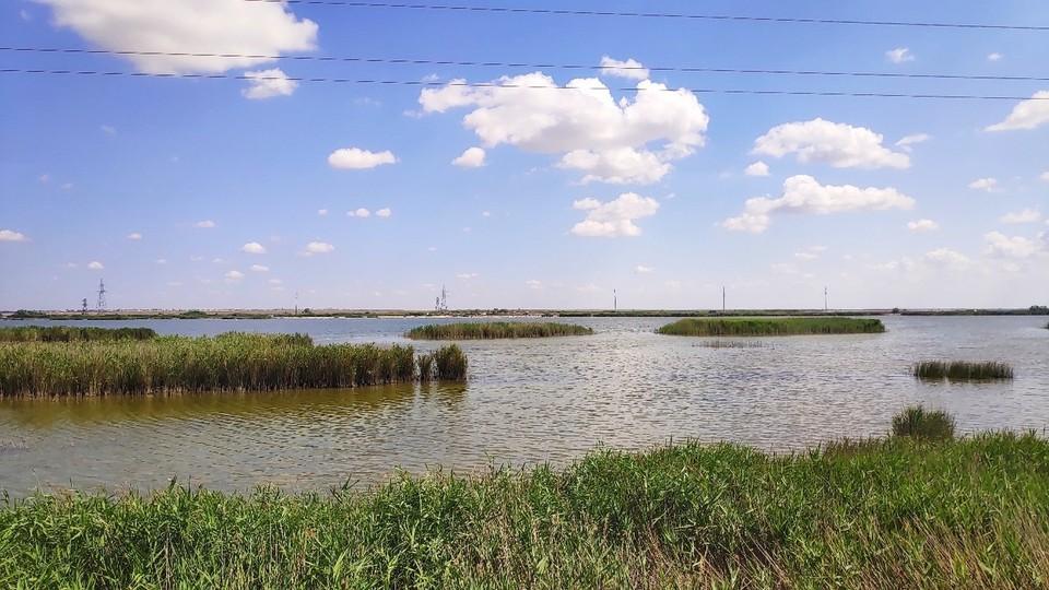 В селе Поповка под Саками жалуются на вонь канализационных стоков из озер.