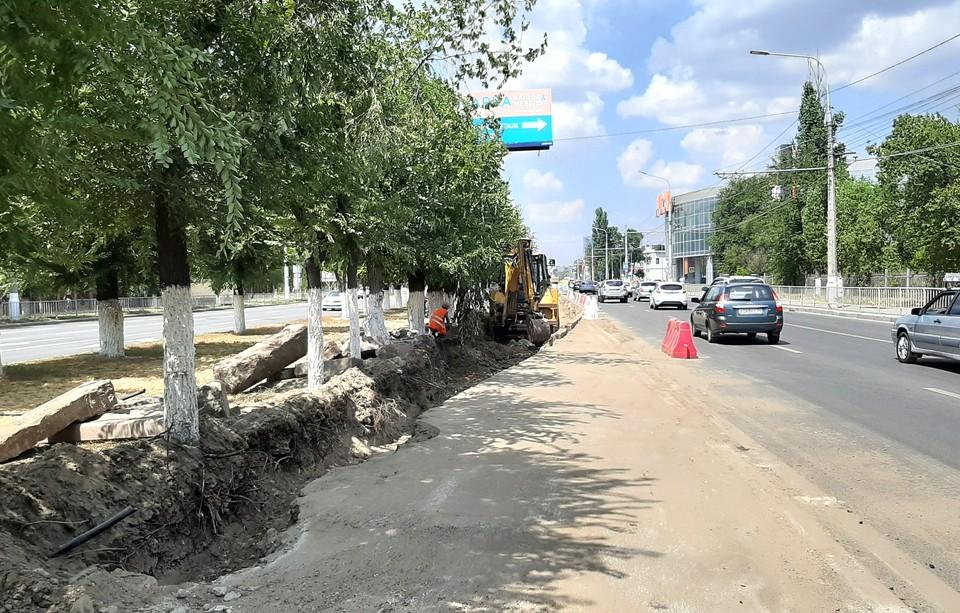 Дорога станет шире на 3,5 метра. А деревья, надеемся, выживут.