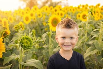 Что подарить мальчику на 6 лет: идеи необычных подарков