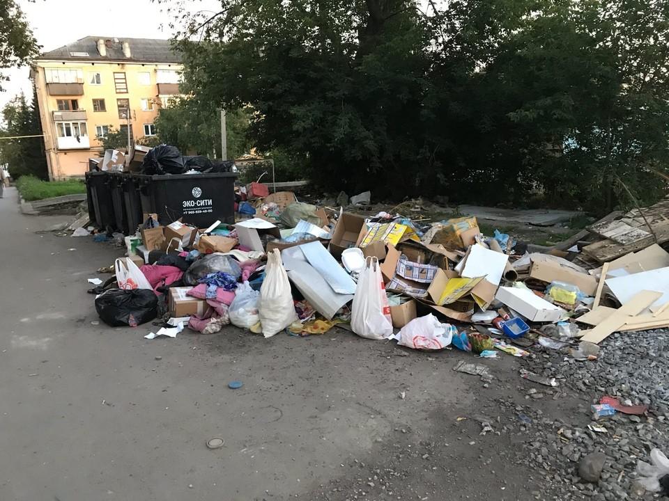 Иногда мусор становится настоящей головной болью для жильцов домов. Фото: соцсети