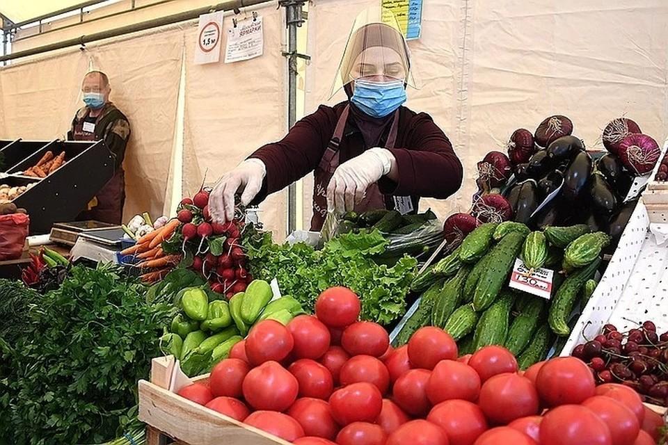 В Самаре в 2020 году будут работать пять сельскохозяйственных ярмарок