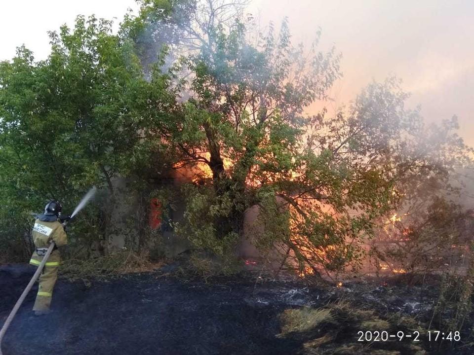 Пожар охватил сразу несколько районов Ростовской области. Фото: пресс-служба донского МЧС