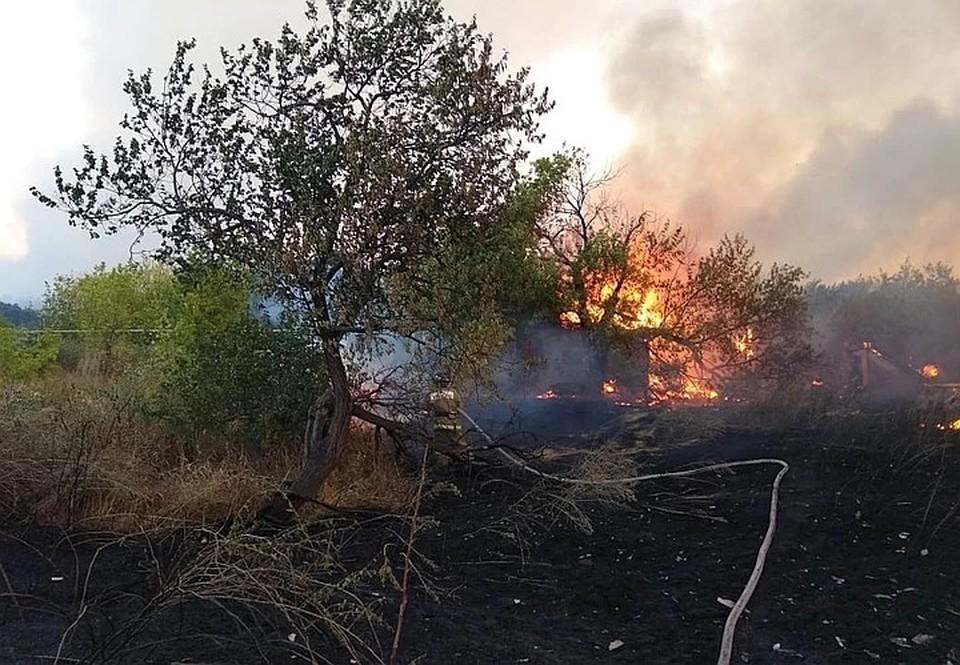 В Ростове бушуют лесные пожары