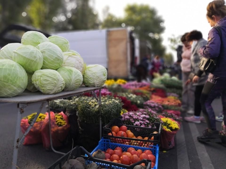В ярмарке приняли участие сельхозпроизводители из 28 районов области