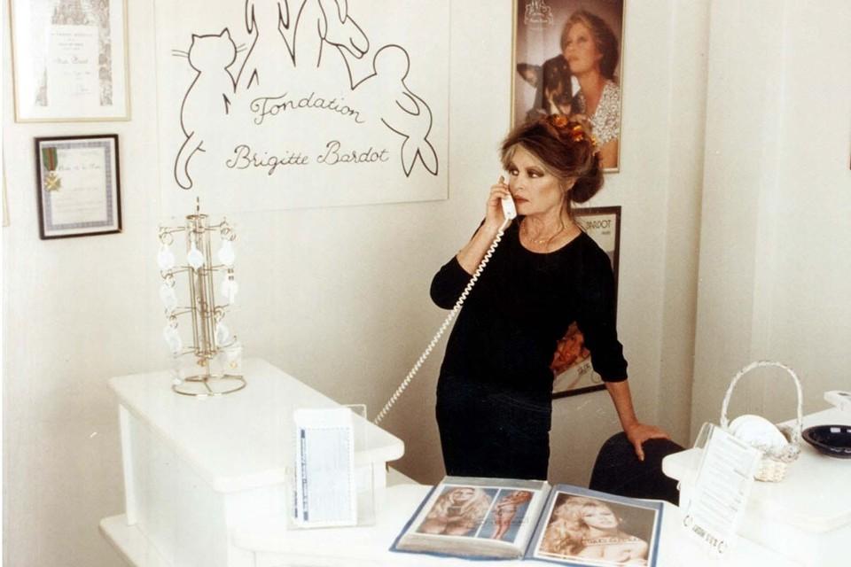 Знаменитой французской киноактрисе, а ныне борцу за права животных Брижит Бардо исполнится 86 лет. Фото: Fondation Brigitte Bardot