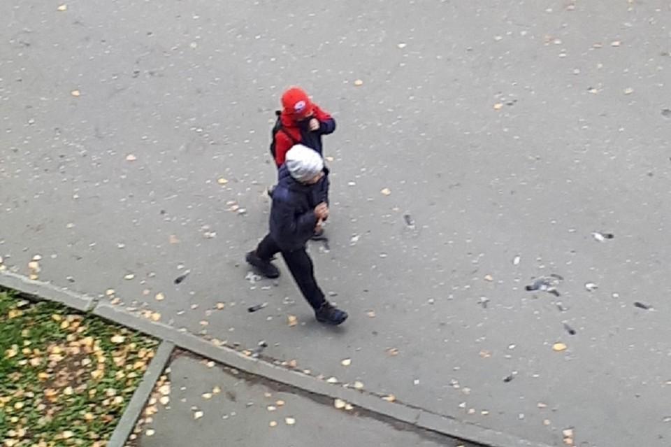 """Очевидцы рассказали, что дети кидали мертвого голубя на машины. Фото: """"Ревизорро Новосибирск"""""""