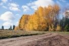 Утро в Ижевске: индексация зарплат, запрет на курение кальянов, погода на октябрь и обзор самых жутких ДТП