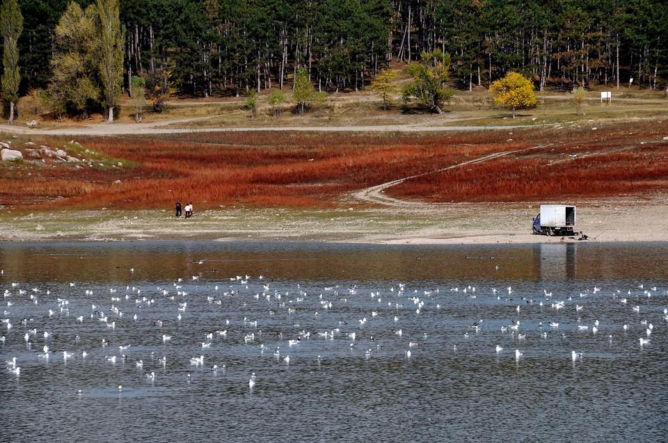 Осадки дали приток в Симферопольское водохранилище