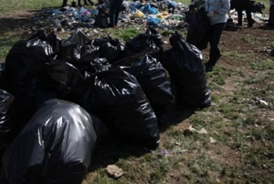 Собирать мусор и бегать - спор и польза природе!