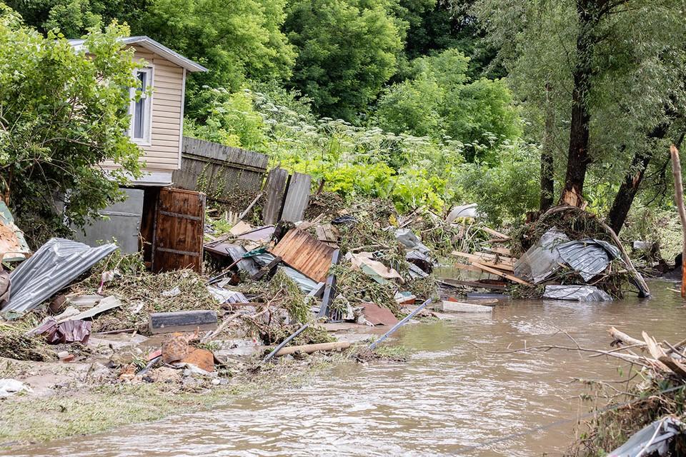 Летом-2020 Московский регион одолевала стихия.