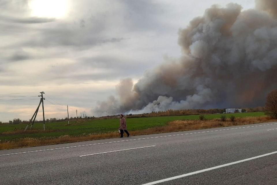 Пенсионеры, спасаясь от пожара, бегут по трассе