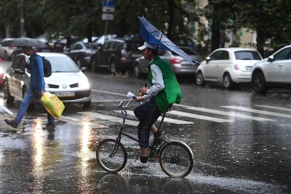 Жителей Московской области предупредили об ураганном ветре